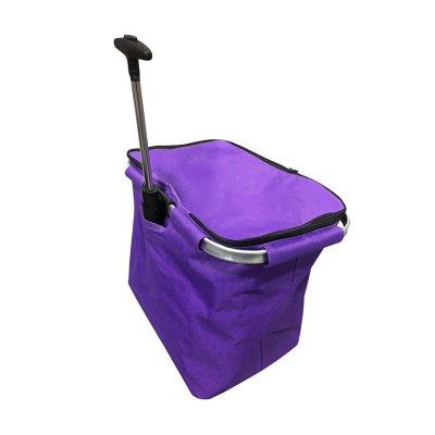 TROLLEY BAG WITH INSULATOR_PB1571