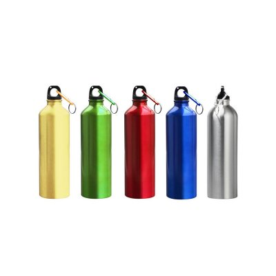 Bottle Aluminium_PD550
